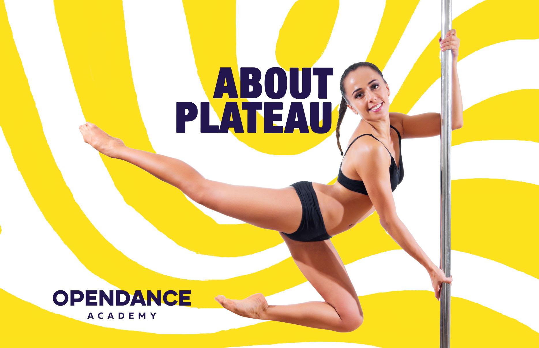 About Plateau